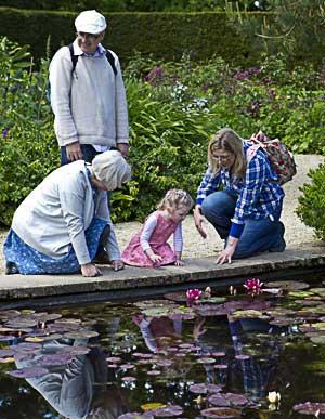 Suocera, suocero, nuora e nipote si specchiano in un lago